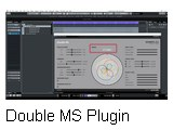 DMS-Plugin